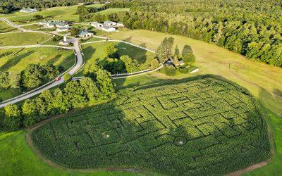 Corn Maze Opens Sept. 3, 2021