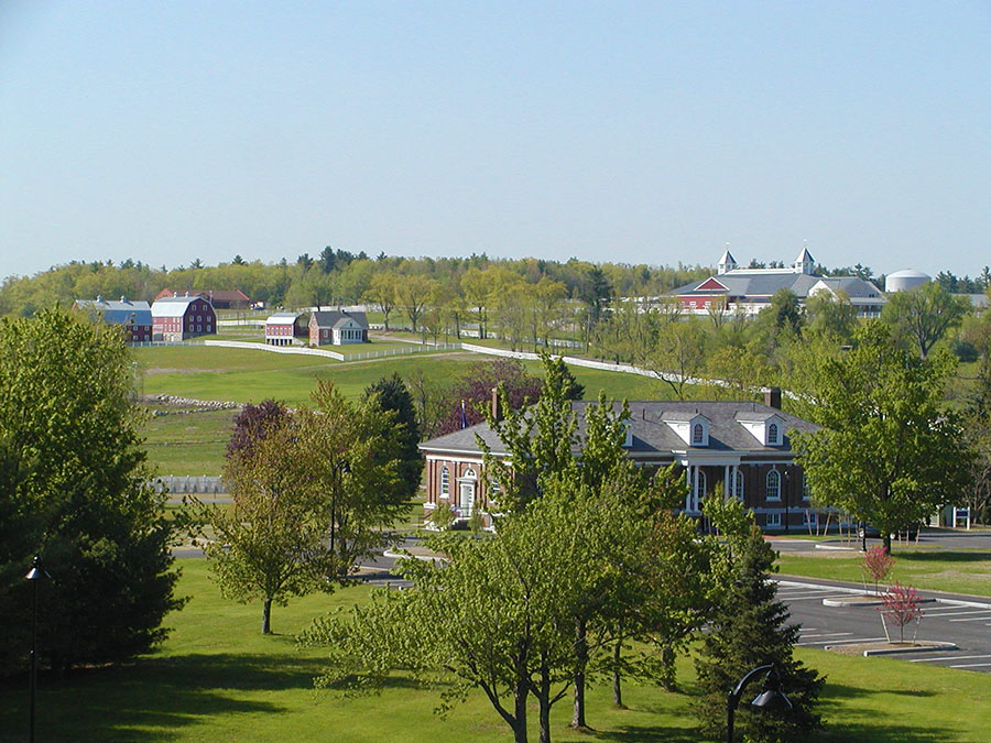 A view from campus