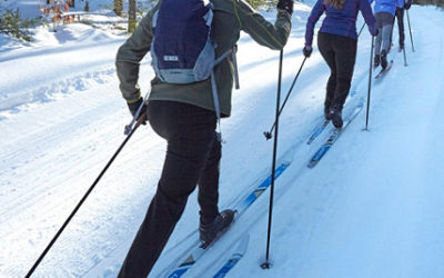 Introductory Level Lessons for Cross Country Skiing