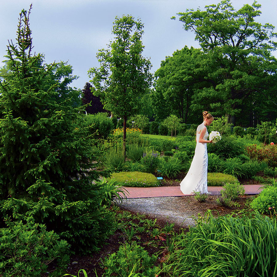 Pineland Farms Romantic Flower Garden