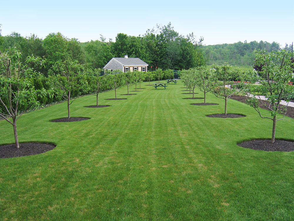 The Pineland Farms Garden