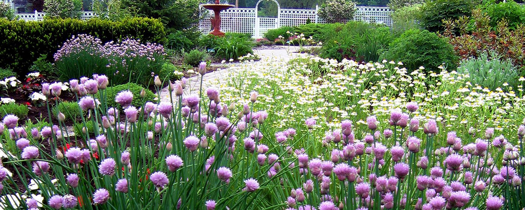 The Garden Pineland Farms Inc